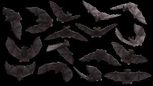 הרחקת עטלפים